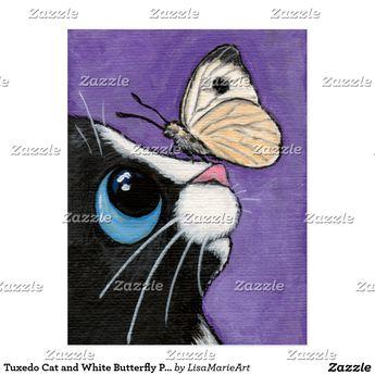 Carte Postale Chat de smoking et peinture blanche de papillon