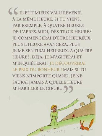 #lepetitprince #prince #pixword #saintexupery  #gallimard #french #litterature #word #literature