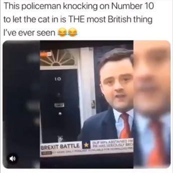 British people❤️
