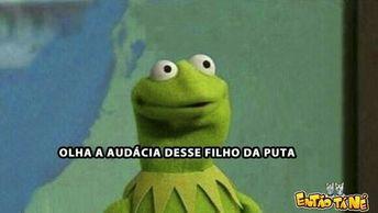 Memes  - memes do sapinho verde