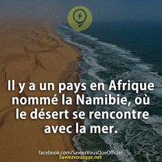 C'est pas le seul. Le Pérou côtoie un Océan avec un Désert.  Par chez mi, dans l'Nord de France, quand l'marée nous grimpe jusqu'au guibole, les Dunes sont en contact avec la Mer.  C'est pas un Désert, c'est un Océan et pas la Mer, mais quand même... ➡️