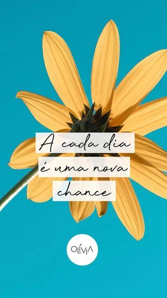 A cada dia é uma nova chance! Frases de reflexão da Vida - Citações - Mensagens de reflexão - Motivação para vida -Frases interessantes - Frases inteligentes - Frases tumblr