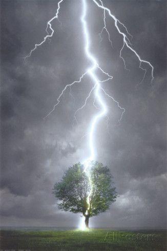 Lightning Striking Tree Posters