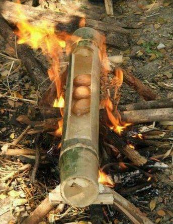 Bambu #wildernesssurvival