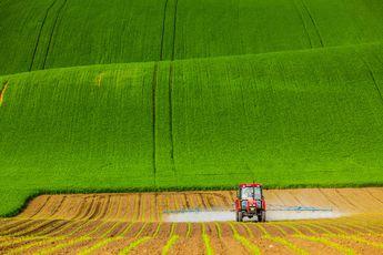 les champs de Moravie par Mikolaj Gospodarek