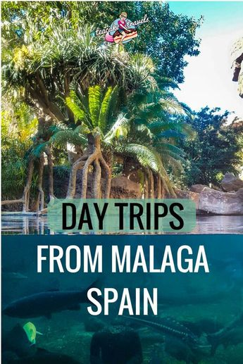 3 Adventure Day Trips From Malaga Guaranteed to Make Your Day