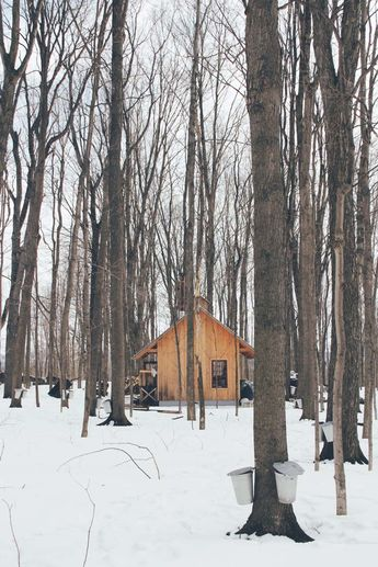 A Visit to a Sugar Shack in the Eastern Townships