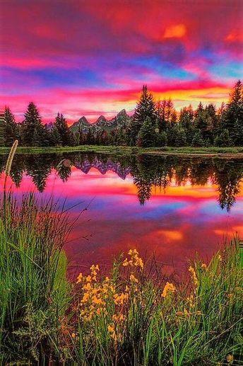 Волшебные цвета лета #лето #пейзаж #природа #summer