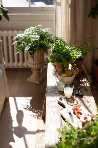 HOW TO CREATE A NATURAL HOME