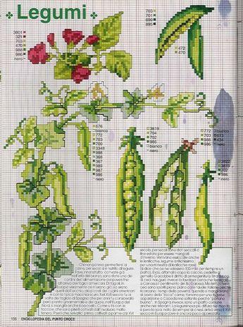 Gallery.ru / Фото #100 - EnciclopEdia Italiana Frutas e verduras - natalytretyak