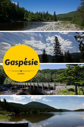 Au pays des orignaux, petit guide pour le Parc national de la Gaspésie