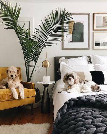 Hey Mom, we're ready for breakfast in bed! #arhauspets. 📸: @lisadieder