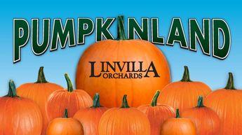 Linvilla Orchard 137 W Knowlton Rd   Media, PA 19063 (610) 876-7116