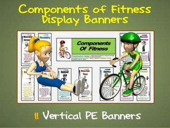 Components of Fitness Display Banners: 11 Large Vertical PE Banners