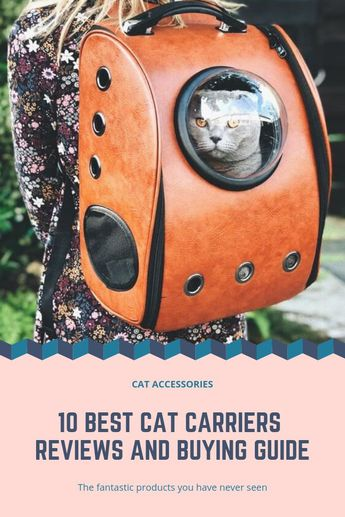 People who own a cat know that cat carriers are an essential accessory to have. There are benefits to this, and one of them is that it helps keep cats secure and safe. It also prevents them from jumping from open car windows.  So, whether you have adopted a cat or you have been a cat parent for years, you have to ensure that you have the best carrier for your furry friend. But now the question is; which carrier should you buy for your cat?