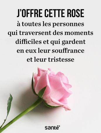 """""""Pour vous"""". Apprenez à accepter l'amitié d'une personne par une simple rose"""