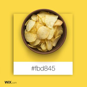 Color Palette Inspiration | Yellow Chips | #fbd845