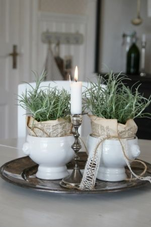 Herbs (Rosemary?) wrapped in newspaper and put into white soup tureens, set on a silver tray.