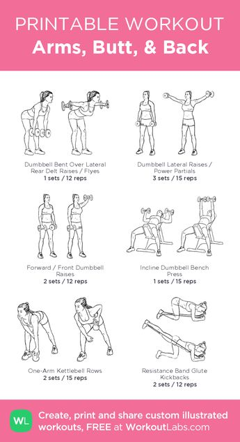 Arms, Butt, & Back · WorkoutLabs Fit
