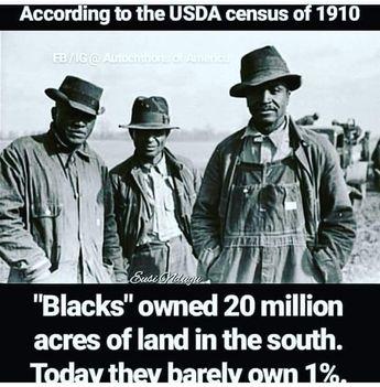 African American land taken/stolen imminent domain