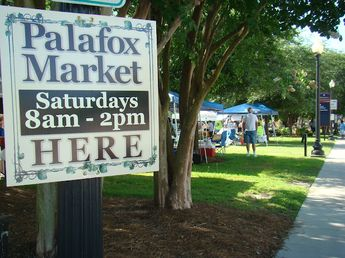 fresh produce, baked goods, art, and more @ The Palafox Market in downtown Pensacola~