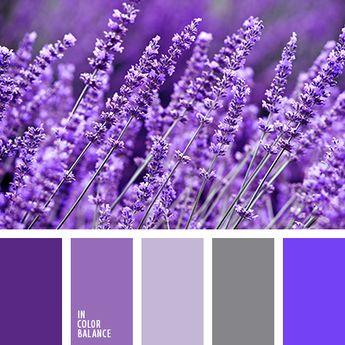 azul oscuro, azul ultramar, color lavanda, de lavanda, elección del color, gris, lavanda y sus colores, matices de color lavanda, morado, tonos violetas, violeta claro, violeta pálido.
