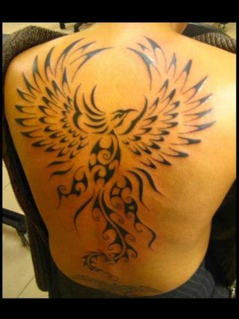 40 Tribal Phoenix Tattoo Designs For Men Mythology Ink Id