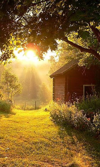 Country Sunbeams - if love to live in the country: