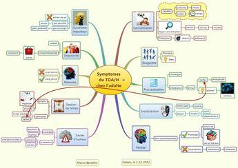 Comprendre et aider le TDAh ( mindmapp) - TDAH - les Pandas du Finistere
