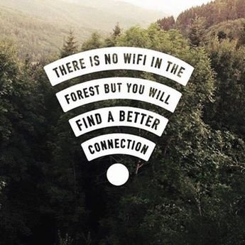 There's no wifi in the forest but....