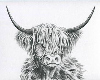 List of Pinterest cows sketch pictures & Pinterest cows