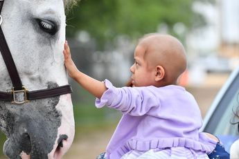 A Young Cancer Patient Made a Wish to Meet a Single Horse. The Equestrian Community Brought Her More Than 70.