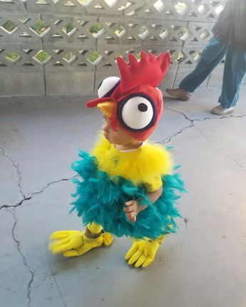 Hei Hei Costume from Disney's Moana Movie. Liam's handmade Halloween costume.