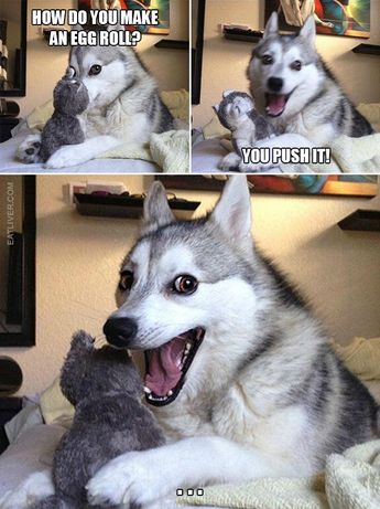 The Best Collection Of Husky Puns