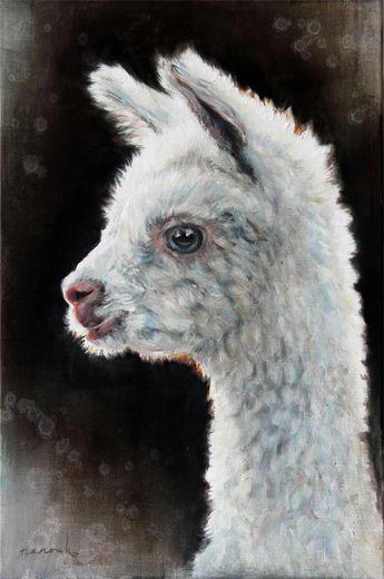 Alpaca foal / Alpaca veulen / 40 x60 cm / oilpainting / olieverfschilderij / 2014