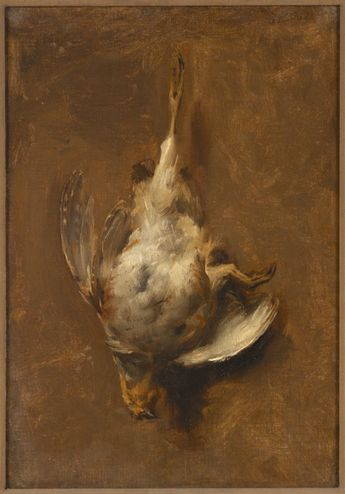 RISD Museum: Jean-Baptiste Oudry, French, 1686-1755. Dead Bird, ca. 1740-1750. Oil on canvas. 36.8 x 26.7 cm (14 1/2 x 10 1/2 inches). Jesse Metcalf Fund, Georgianna Sayles Aldrich Fund, Mary B. Jackson Fund, and Edgar J. Lownes Fund 54.176