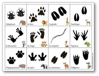 Jeu de mémoire des empreintes des animaux d'Afrique - Mémory Empreintes