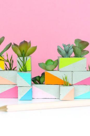 Mini Succulent Garden for your Office or Desk