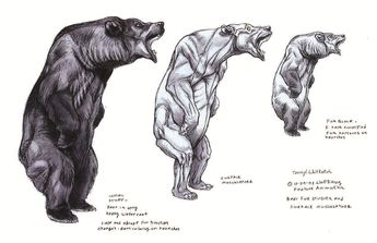 """suckmycockatoo: """" Fantastic reference for bears! """""""
