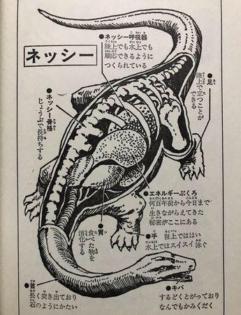 わたべまさひこ(渡部昌彦) on Twitter