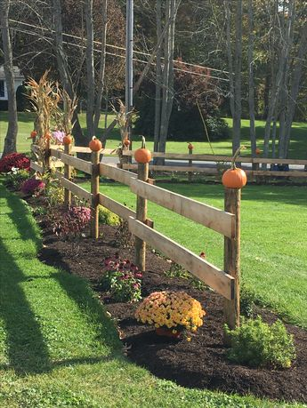 Our Fence Ready for fall!
