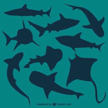 Jawsome Free Shark Printables