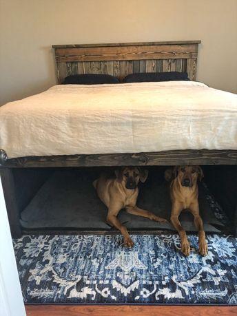 California King Holzbett mit Hund Höhle darunter. Genius! Ich hoffe, die Naben werden