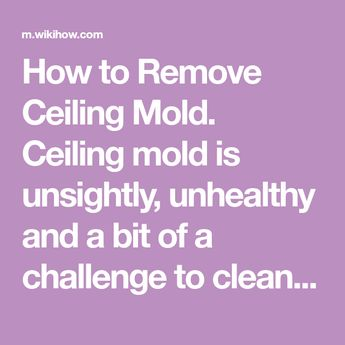 Remove Ceiling Mold