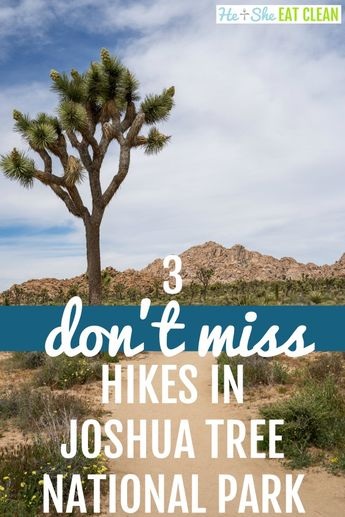 Top 3 Hikes in Joshua Tree National Park