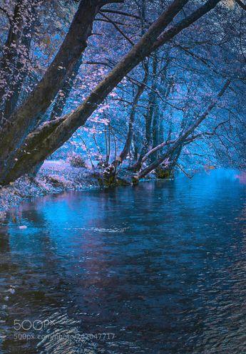 """ Symphony of the Bosnia river "" (Mevludin Sejmenovic / Sarajevo / Bosnia and Herzegovina) #NIKON D610 #landscape #photo #nature"