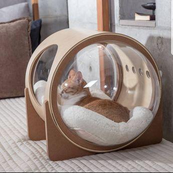 MorePets | More-Pets.com | Premium Designer Pet Product Toy Supply