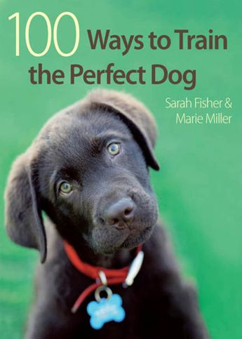 100 Ways to Train the Perfect Dog (eBook)