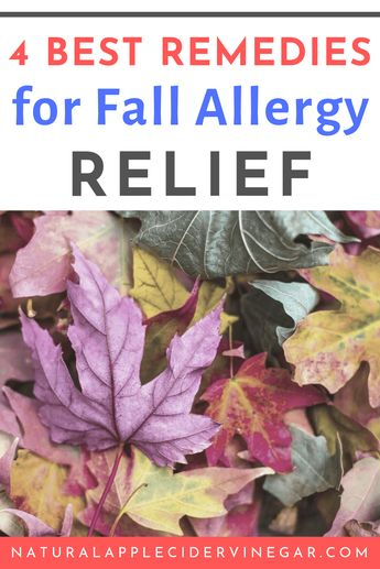 Top 4 Best Practices for Natural Fall Allergy Relief