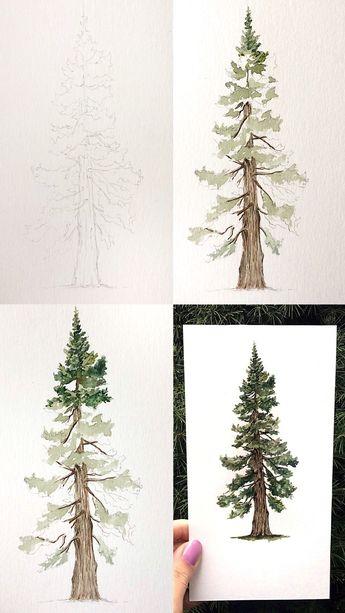 Mini tutorial of a pine tree with step by step process photos #tutorial #art #artist #painting #paintingtutorial #paintingtips #artwork #watercolour #watercolor #painting #paintingart #processart #watercolorarts